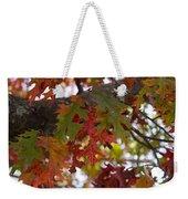 Fall In Virginia Weekender Tote Bag