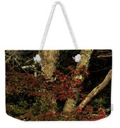 Fall Is Closing In Weekender Tote Bag