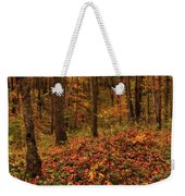 Fall On The Ice Age Trail Weekender Tote Bag