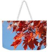Fall Red Orange Leaves Blue Sky Baslee Troutman Weekender Tote Bag