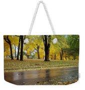 Fall Series 15 Weekender Tote Bag