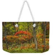 Fall Sumac Trees With Red Leaves In A Michigan Forest During Autumn Weekender Tote Bag
