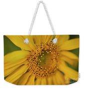 Fall Sunflower Avila, Ca Weekender Tote Bag