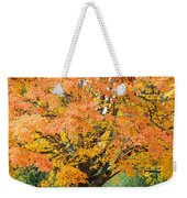 Fall Tree Art Print Autumn Leaves Weekender Tote Bag