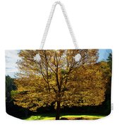 Fall Tree Silhouette Kent Falls State Park Connecticut Weekender Tote Bag