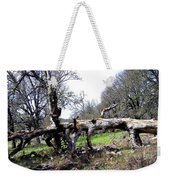 Fallen Mighty Oak Weekender Tote Bag