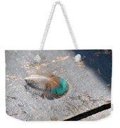 Fallen Peacock Feather Weekender Tote Bag