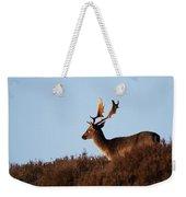 Fallow Buck Weekender Tote Bag