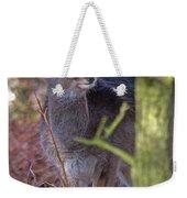Fallow Deer Fawn Weekender Tote Bag