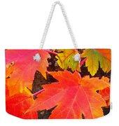 Falltime ...  Weekender Tote Bag