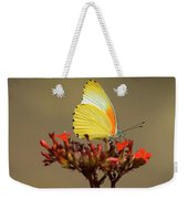 False Dotted Border Butterfly Weekender Tote Bag