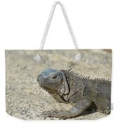 Fantastic Gray Iguana With Spines Along His Back Weekender Tote Bag