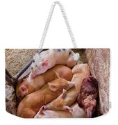 Farm - Pig - Five Little Piggies And A Chicken  Weekender Tote Bag