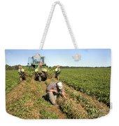 Farmer Inspects Peanut Field Weekender Tote Bag