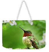 Fauna And Flora - Hummingbird With Flowers Weekender Tote Bag