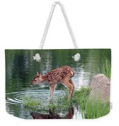 Fawn At The Water Hole Weekender Tote Bag