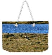 Fawn Caribou Weekender Tote Bag