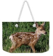 Fawn In The Open Weekender Tote Bag