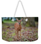 Fawn In Woods At Shiloh National Military Park Weekender Tote Bag