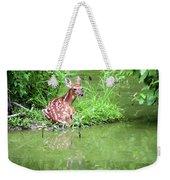Fawn White Tailed Deer Wildlife Weekender Tote Bag