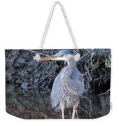 Feather Boa Weekender Tote Bag