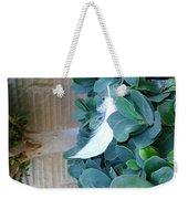 Feather Weekender Tote Bag