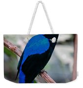 Feathered Fairy Weekender Tote Bag