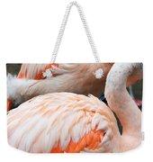 Feathers Of Flamingo Weekender Tote Bag