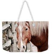 February Horse Portrait Weekender Tote Bag