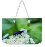 Feeding Insect Weekender Tote Bag