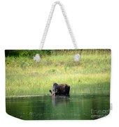Feeding Moose Weekender Tote Bag