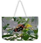 Feeding Time - Butterfly Weekender Tote Bag