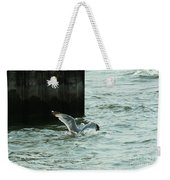 Feeding Time In Ephraim Wi Weekender Tote Bag