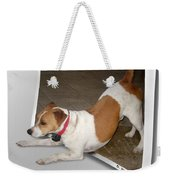 Feeling Frisky Weekender Tote Bag