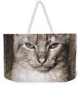 Feline Weekender Tote Bag