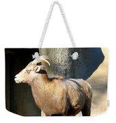 Female Bighorn Sheep Ewe Weekender Tote Bag