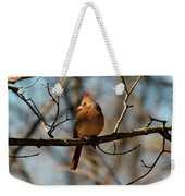 Female Cardinal Weekender Tote Bag