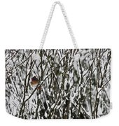 Female Cardinal In The Snow Weekender Tote Bag