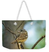 Female Grossbeak Looking Back Weekender Tote Bag