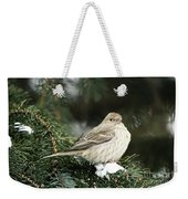 Female House Finch On Snow Weekender Tote Bag