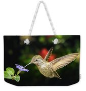 Female Hummingbird And A Small Blue Flower Left Angled View Weekender Tote Bag