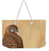 Female Kestrel Study Weekender Tote Bag