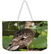 Female Mallard Among Lily Pads Weekender Tote Bag