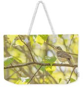 Female Rose-breasted Grosbeak Weekender Tote Bag