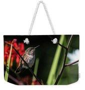 Female Rufous Hummingbird Weekender Tote Bag