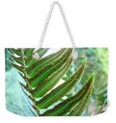 Fern Art Print Green Forest Ferns Baslee Troutman Weekender Tote Bag