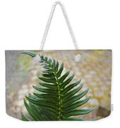 Fern Art Prints Green Garden Fern Branch Botanical Baslee Troutman Weekender Tote Bag