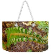Fern Branch Leaves Art Prints Forest Ferns Natures Baslee Troutman Weekender Tote Bag