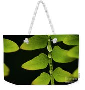 Fern Close-up Nature Patterns Weekender Tote Bag