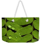 Fern Close-up With Water Droplets  Weekender Tote Bag